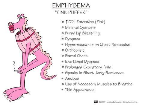 "cupcakern: COPD- Emphysema ""Pink puffer"""