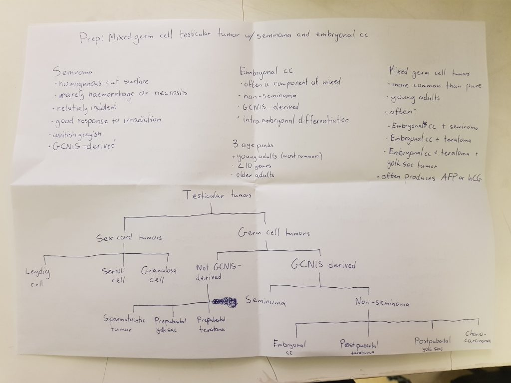 greek doctor – Notes for POTE